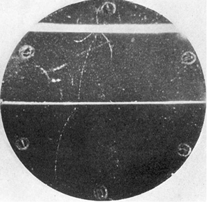 The First Antiparticle image