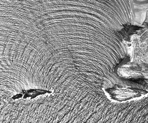 Oceanography: Waves  image